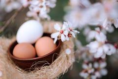 Ägg för påsk mot bakgrunden av ett blommande vårträd stock illustrationer