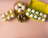 Ägg för för vithönahöna och vaktel i den kulöra pappers- eco-vänskapsmatchen som förpackar med bakgrund för påsk för sisalhampanä Royaltyfria Foton