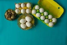 Ägg för för vithönahöna och vaktel i den kulöra pappers- eco-vänskapsmatchen som förpackar med bakgrund för påsk för sisalhampanä Royaltyfri Bild