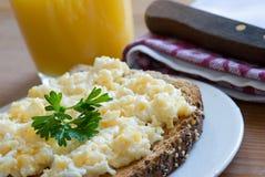 ägg förvanskad rostat bröd Royaltyfri Foto