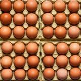 Ägg fega ägg som bakgrundsslut upp makro Fotografering för Bildbyråer