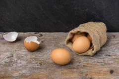 Ägg från den bruna säcken och skalägget Arkivfoton