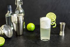 Ägg Gin Fizz Cocktail royaltyfri foto