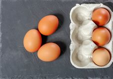 Ägg i äggpanelen royaltyfri fotografi