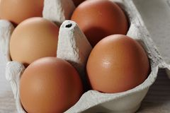 Ägg i äggpanelen royaltyfria foton