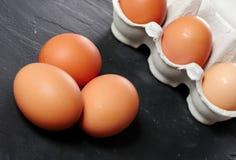 Ägg i äggpanelen arkivfoton