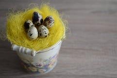 Ägg i dekorativ hink Fotografering för Bildbyråer