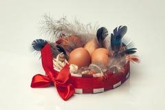 Ägg i dekorativ rund ask Arkivfoto