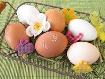 Ägg i den easter korgen Royaltyfria Bilder