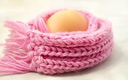 Ägg i den varma rosa halsduken Royaltyfri Fotografi