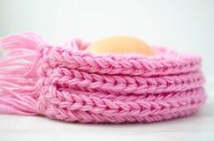 Ägg i den varma rosa halsduken Royaltyfria Foton