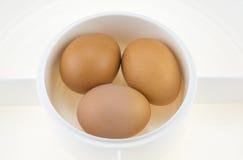 Ägg i den vita plast- plattan Royaltyfri Fotografi