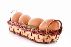 Ägg i det isolerade redet Royaltyfri Bild