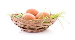 Ägg i det isolerade redet Arkivfoton
