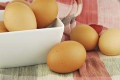 Ägg i en bunke Arkivfoton