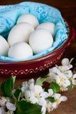 Ägg i en bunke och en blomma Arkivbilder