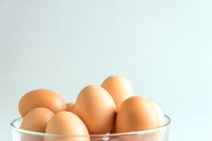 Ägg i en bunke på en vit bakgrund Arkivbilder