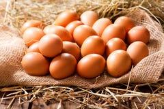 Ägg i en hög av hö arkivfoto