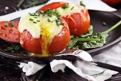 Ägg i en kopp eller en bakad tomat royaltyfria bilder