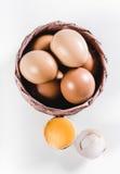 Ägg i en korg Arkivbilder