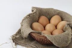Ägg i en korg Royaltyfri Foto