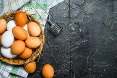 Ägg i en korg med viftar och servetten royaltyfri foto