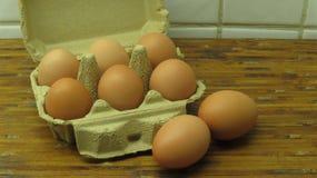 Ägg i en kortask royaltyfria bilder