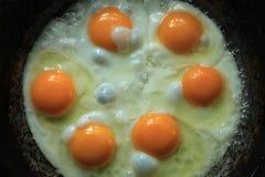 6 ägg i en stekpanna Fotografering för Bildbyråer