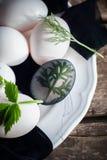Ägg i etapp av förberedelsedekormalört för lycklig påsk Bi Arkivfoton