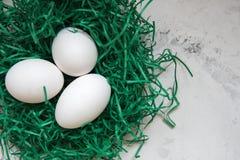 Ägg i ett dokument med olika förslag bygga bo tre vita ägg Arkivfoton