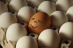 Ägg i ett magasin av ägg Ð-¡ oloured det glade ägget i ett magasin av ägg Royaltyfri Bild