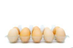 Ägg i ett plast- magasin Royaltyfri Fotografi
