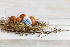 Ägg i ett rede från sugrör Arkivbilder