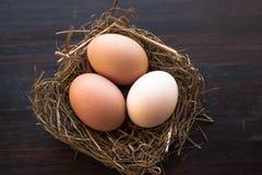Ägg i ett rede på en brun träbakgrund Arkivfoto