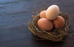 Ägg i ett rede på en brun träbakgrund Royaltyfri Bild