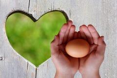 Ägg i händer på träbakgrund med grön hjärta royaltyfri foto