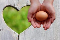 Ägg i händer på träbakgrund med grön hjärta royaltyfri fotografi