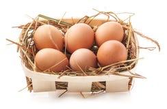 Ägg i hö Arkivfoton