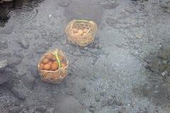 Ägg i Hot Springs Arkivbild