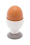 Ägg i keramisk kopp Royaltyfria Bilder