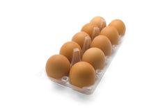 Ägg i klart plast- magasin Arkivfoto