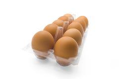 Ägg i klart plast- magasin Royaltyfria Bilder