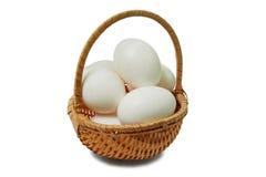Ägg i korg Arkivbild