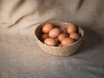 Ägg i korg Arkivfoton