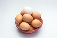 Ägg i korg på vit bakgrund Arkivbild