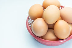 Ägg i korg på vit bakgrund Royaltyfria Bilder