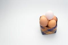 Ägg i korg på vit bakgrund och det enkla vita ägget Royaltyfri Bild