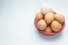 Ägg i korg på vit bakgrund och det enkla vita ägget Arkivbilder