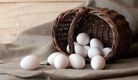 Ägg i korgen Fotografering för Bildbyråer