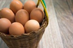 Ägg i korgen Arkivfoton